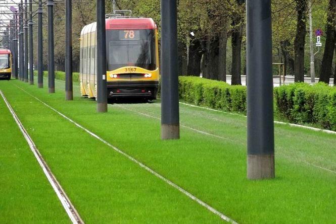 Вінничанка Вероніка пропонує засіяти травою трамвайні колії