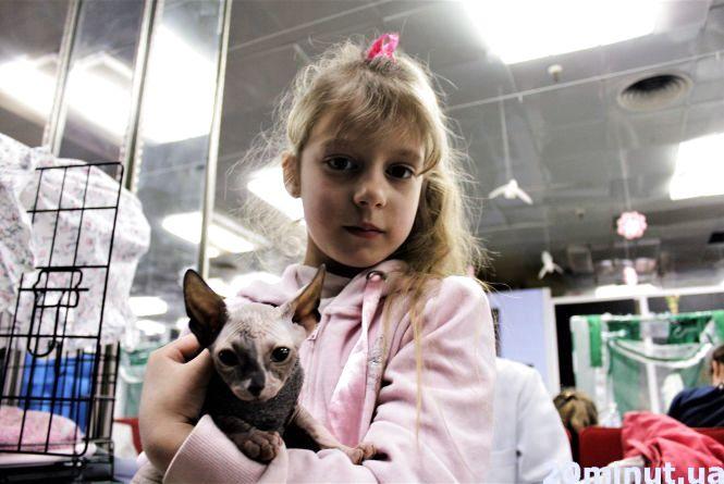Вусачі від 300 до 5 тисяч євро: у Вінниці відкрилася виставка рідкісних порід котів