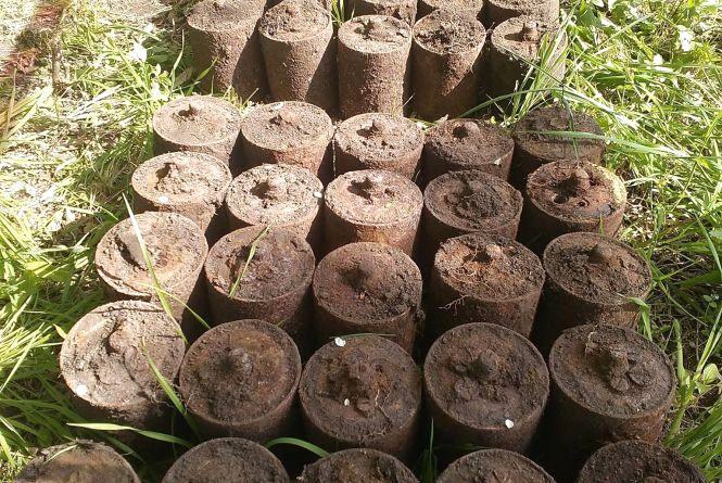 Вибухи під Калинівкою: в лісі знайшли 70 мін. Дивіться як це було (ВІДЕО)