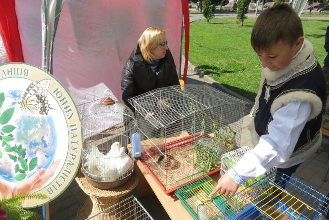 Міні-виставку тварин і птахів демонстрували просто неба у центрі міста