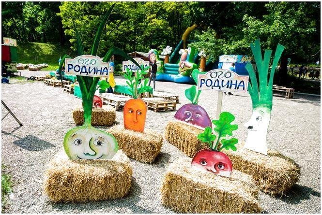 В Вінниці встановлюватимуть рекорд України – творитимуть картину з насіння