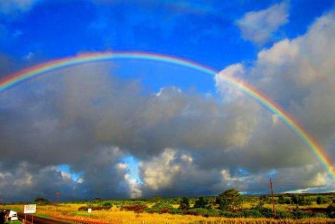 Яку погоду очікувати вінничанам на наступному тижні. Прогноз на 10-16 липня