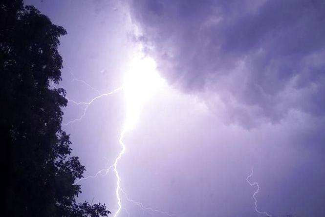 Буревій на Вінниччині: З будинків летіли дахи. Дерева падали на дорогу