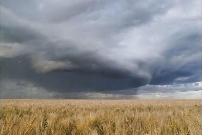Яку погоду вінничанам очікувати протягом 24-30 липня