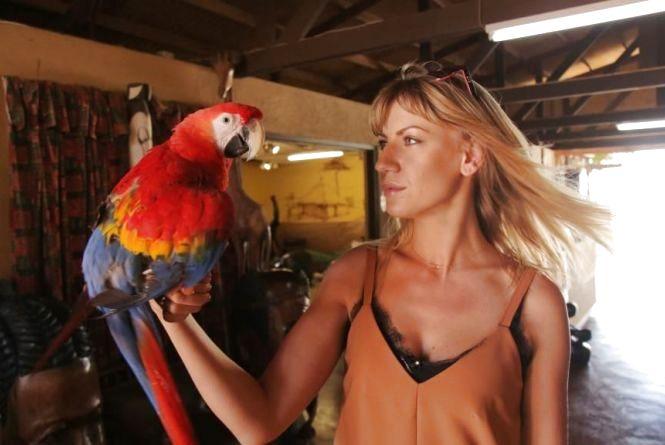 Острів в Карибському морі і Шрі-Ланка — поради українським туристам (прес-служба «Інтер»)
