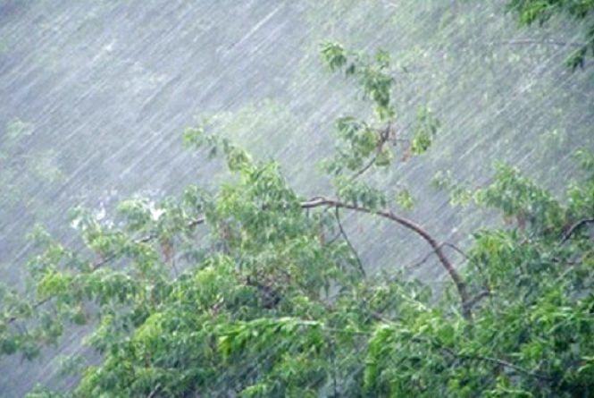 Сильний вітер та дощ. Прогноз погоди на наступний тиждень
