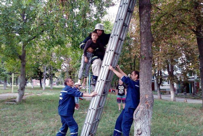 В Ладижині хлопчик видерся на дереві до 4 поверху. Викликали рятувальників