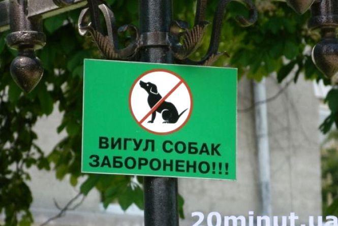 Вінничанин пропонує заборонити вигулювати собак по проспекту Космонавтів