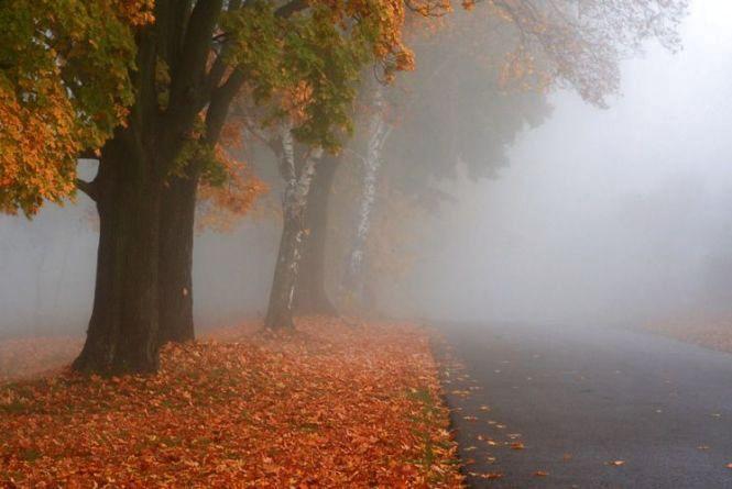 Прогноз погоди на 24 жовтня: синоптики попереджають про похолодання та туман