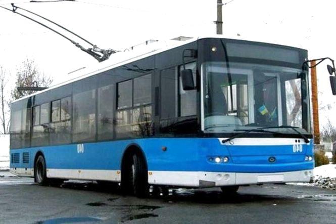 """Тролейбуси на """"Корею"""". Вінничанка збирає голоси на підтримку ідеї"""