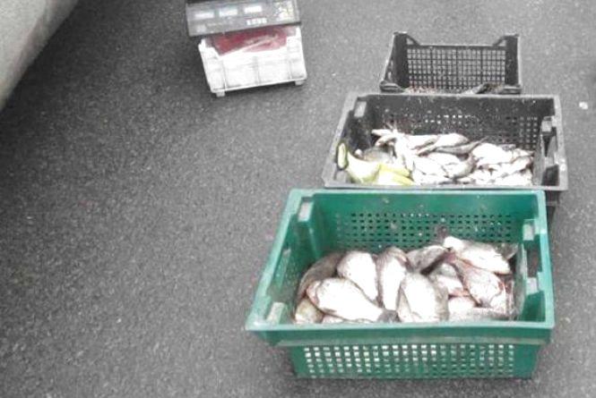Жительку Ладижина судитимуть за торгівлю рибою та раками