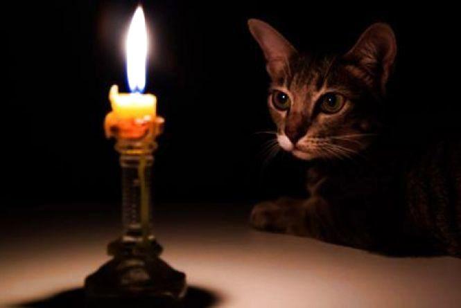 Завтра жителі однієї вулиці сидітимуть без світла