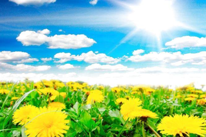 Якою буде погода у кінці квітня та на початку травня: прогноз від синоптиків