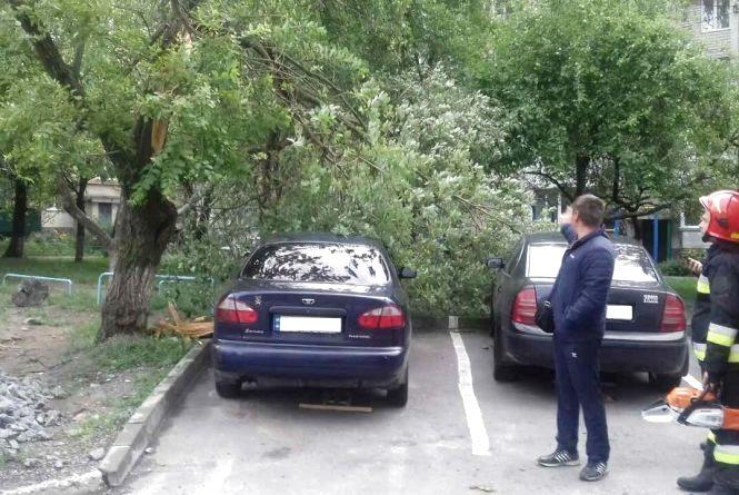 Наслідки негоди: рятувальники прибирали повалені дерева та відкачували воду з будинків