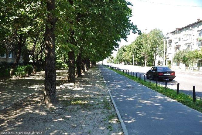 Петиції: просять змінити проект реконструкції вулиці Замостянської