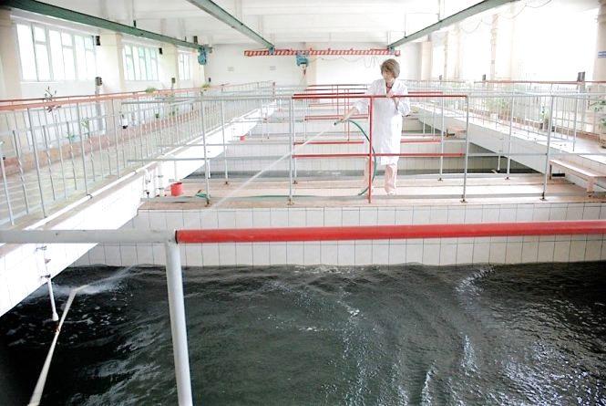Чим грозить городянам відсутність хлору в складах «Водоканалу»