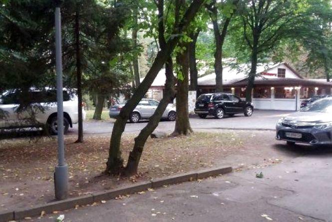 Авто їздять по алеям парку. Як мерія «красиво» відповіла на петицію