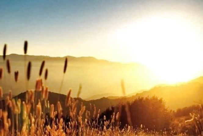 Прогноз погоди у Вінниці на сьогодні, 13 серпня