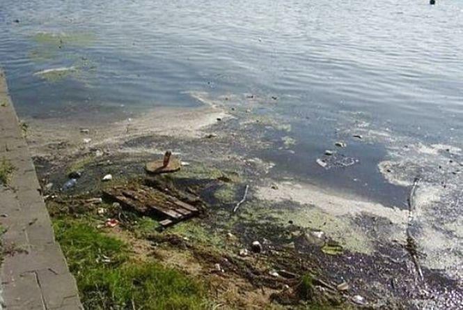 Відповідь на петицію: чи очистять Буг водоростями хлорела, як у Плавнях?