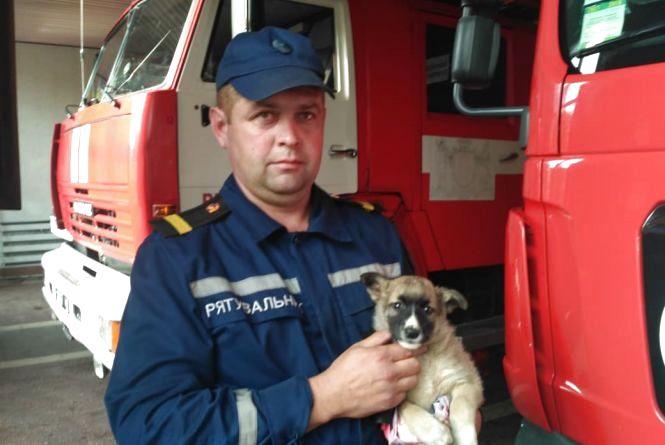 Рятувальники відкачували воду з лікарні, рятували тварин та пенсіонерку