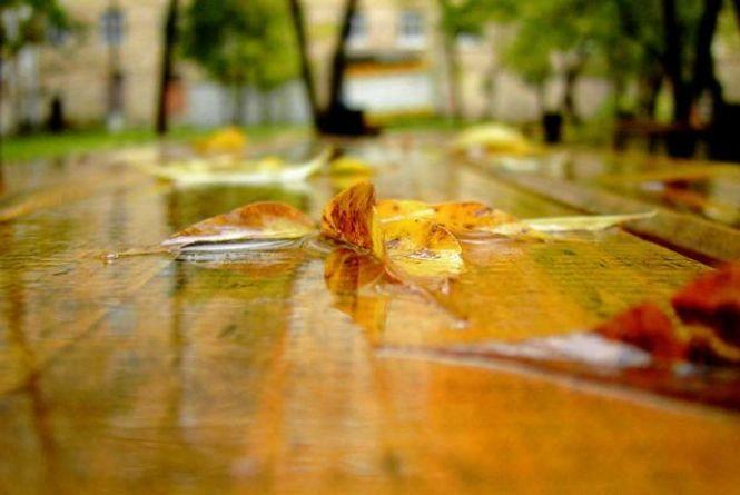 В Україну повертаються дощі. Прогноз погоди на вихідні 15-16 вересня