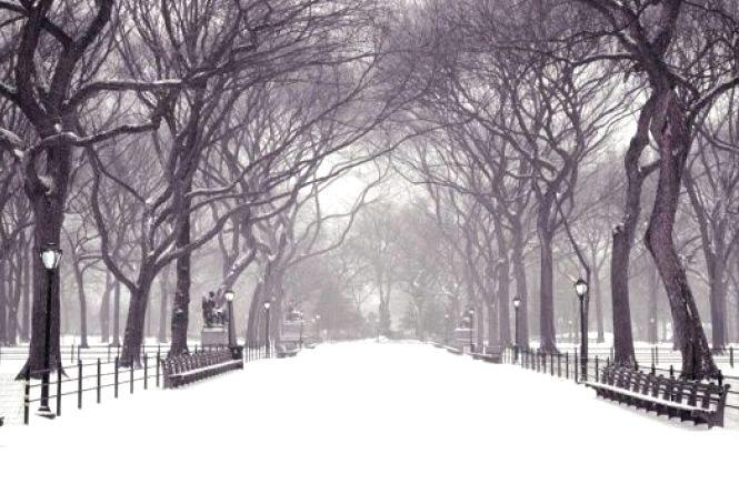 Синоптик розповів, яка буде погода взимку в Україні