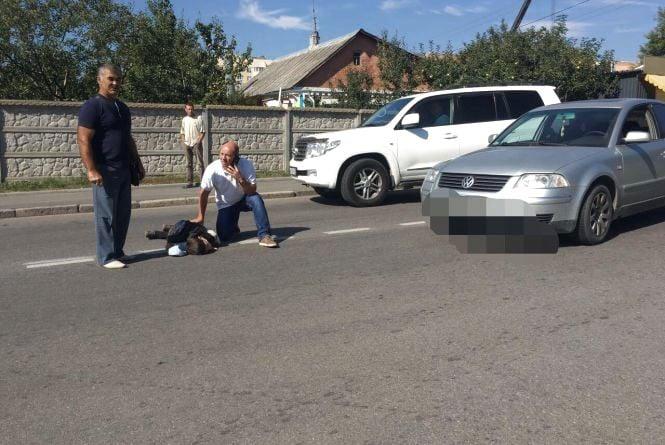 На Прикарпатті іномарка збила 9-річного школяра