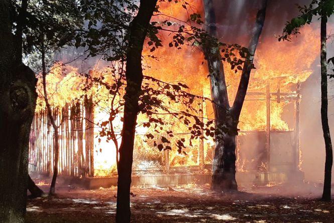 Пожежа у центральному парку. Що там горіло?