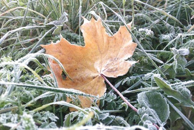 Дощі покинуть Вінниччину, але ненадовго. Очікуються заморозки