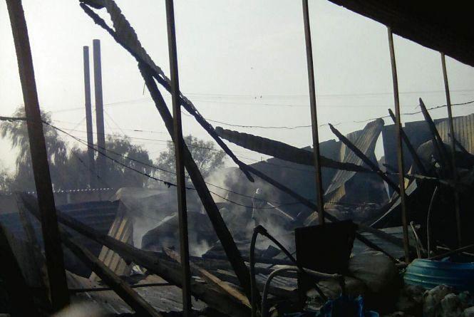 У Жмеринському районі згорів парник, де вирощували гриби