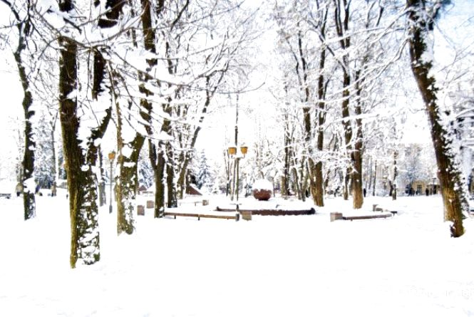 Прогноз погоди в Вінниці сьогодні, 13 грудня 2018 року