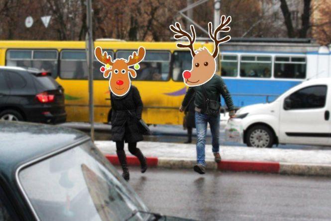 Обережно, «олені» на дорогах — 2! Санта Клаус розгубив звірят у Вінниці