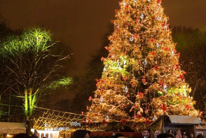 Закриття новорічної ялинки у Вінниці: розказали програму святкування