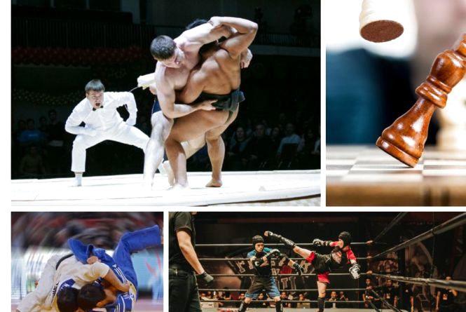 Анонси спортивного тижня: кікбоксинг, сумо, дзюдо, шахи