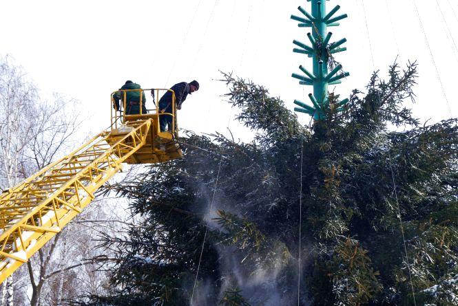 Фото дня: В парку розбирають новорічну ялинку