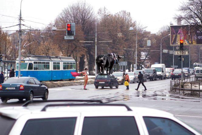 Обережно, «рогаті» на дорогах! Як водії влаштували «кориду» на світлофорі