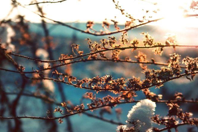 Буде сухо та тепло: прогноз погоди на 15 лютого