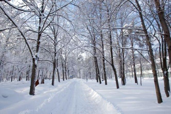 Морозно і багато снігу: синоптики розповіли про повернення зими
