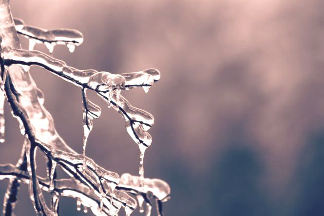 «Складна завтра погода очікується»: синоптик розказала, де замете снігом
