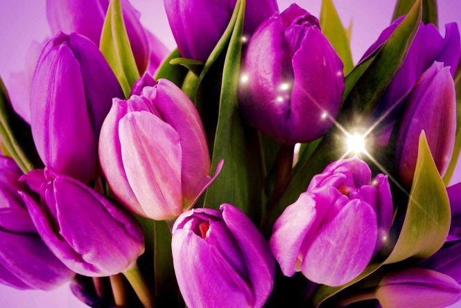 Вихідні в березні: скільки будемо відпочивати на Жіночий День?