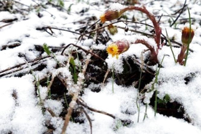 Весна прийде не скоро: синоптик розповів про заморозки та мокрий сніг
