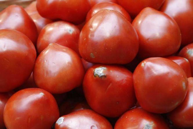 Заражений вантаж: польські помідори затримали на вінницькій митниці