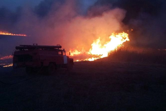 Жахлива смерть: на Вінниччині бабуся згоріла живцем, коли палила траву