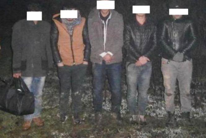 Операція «Мігрант»: чому шістьох громадян Туреччини «виганяють» з України?