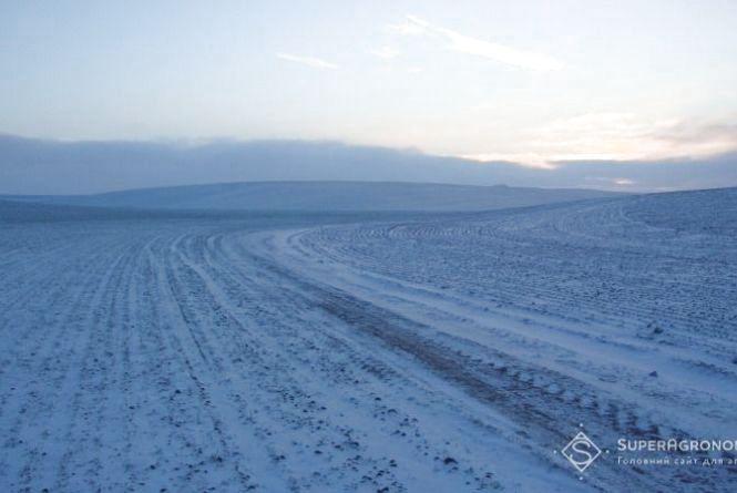 На Вінниччині через похолодання і сніг призупинили посівну кампанію