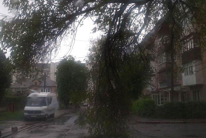 Наслідки негоди: 12 сіл без світла, підтоплені будинки та дерева, які впали на авто