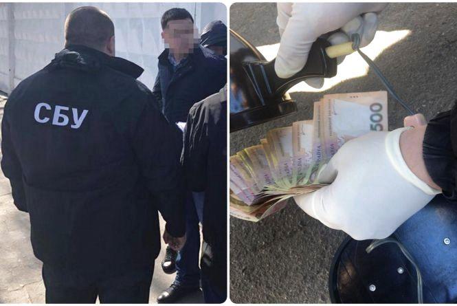 ДТП та 300 доларів: що відомо про справу затриманого на хабарі патрульного
