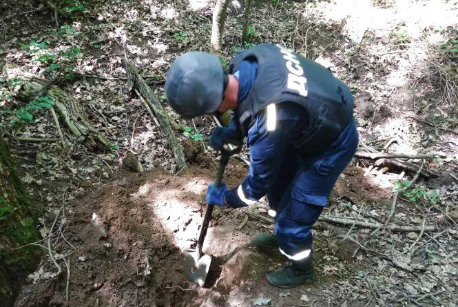 Відгуки минулого: у лісі знайшли 123 боєприпаси часів Другої світової