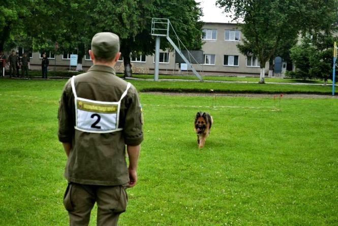Вінницький солдат-кінолог та його собака перемогли у всеукраїнських змаганнях