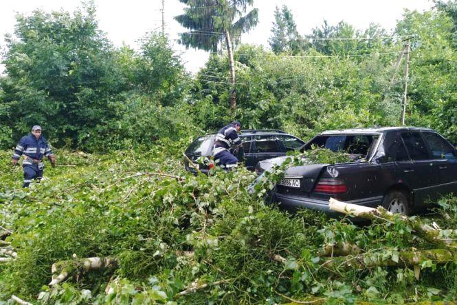 Падали дерева на автівки та виривало дахи: Вінниччиною пронісся буревій